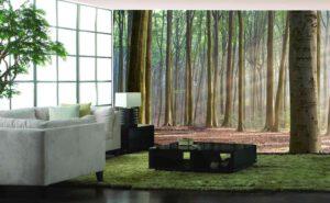 Salon Forest